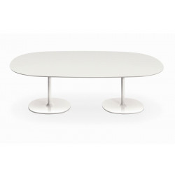 DIZZIE DINING TABLE WITH DOUBLE BASE